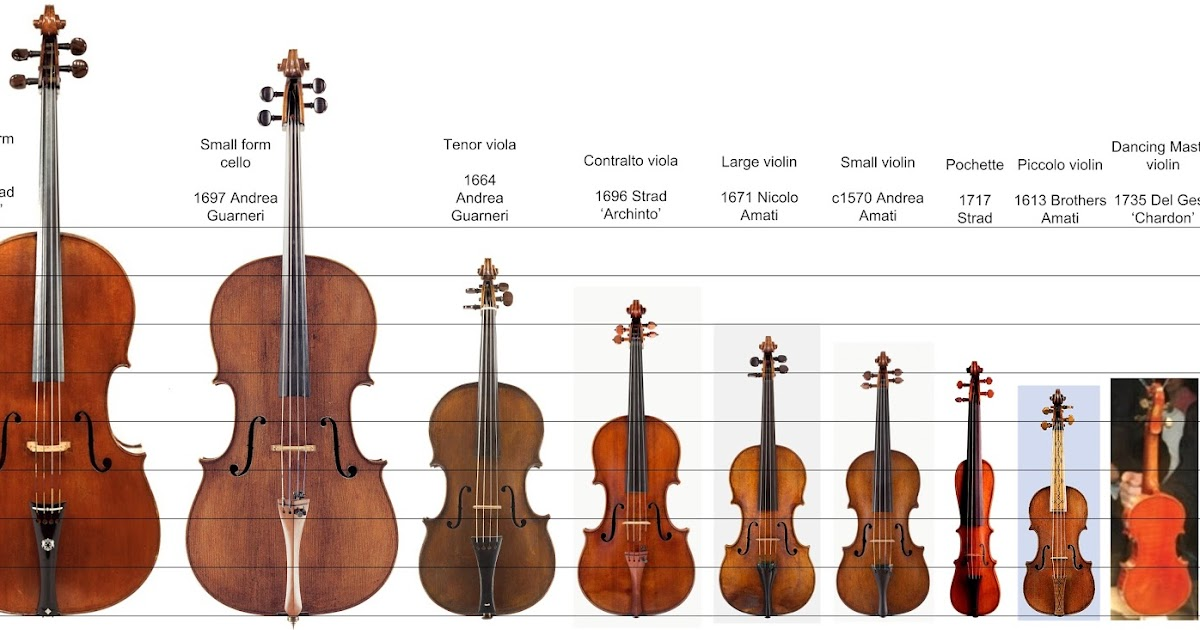 david of santa barbara violin maker david beard a range of sizes. Black Bedroom Furniture Sets. Home Design Ideas