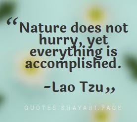 Lao Tzu Quotes-Nature Quotes