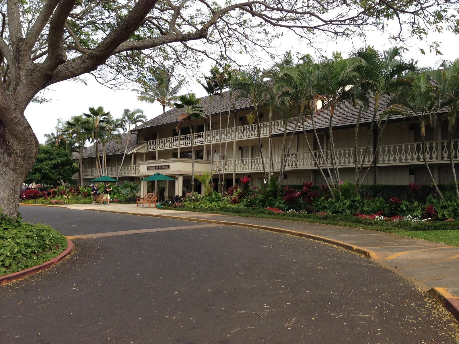 TASTE OF HAWAII: KILAUEA FISH MARKET - KAPAA, KAUAI