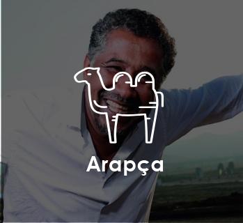 2017 en iyi arapça şarkılar