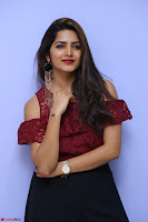 Pavani Gangireddy in Cute Black Skirt Maroon Top at 9 Movie Teaser Launch 5th May 2017  Exclusive 093.JPG