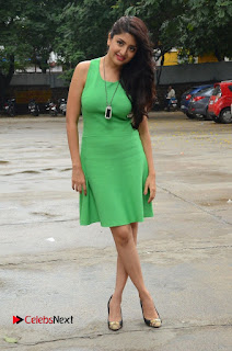 Actress Poonam Kaur Pictures in Green Short Dress at Prayanam Movie Opening  0085