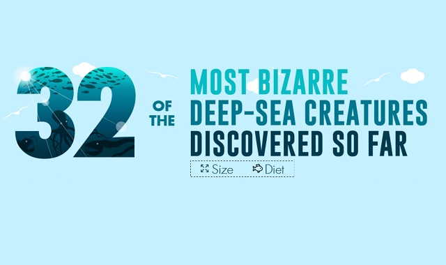 32 of the Most Bizarre Deep-Sea Creatures Discovered So Far