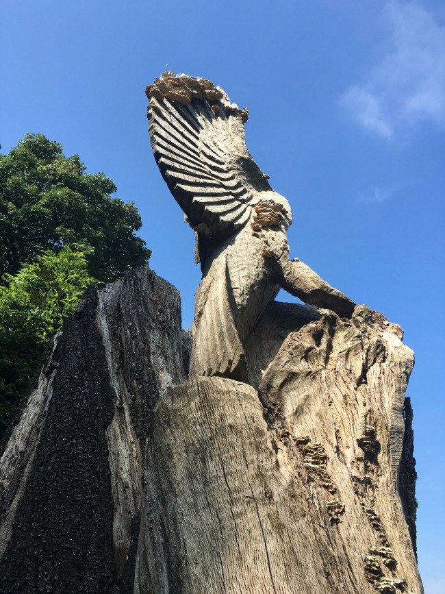 owl-carved-from-stump-of-tree