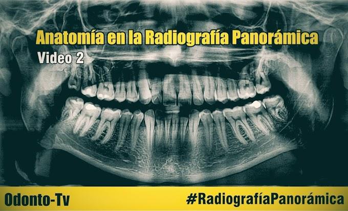 RADIOLOGÍA ORAL: Anatomía en la Radiografía Panorámica - Parte 2