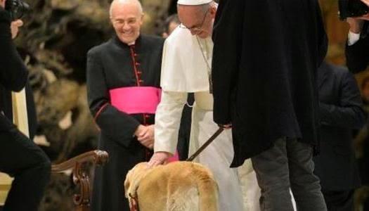 Papa Francisco los perros van al cielo