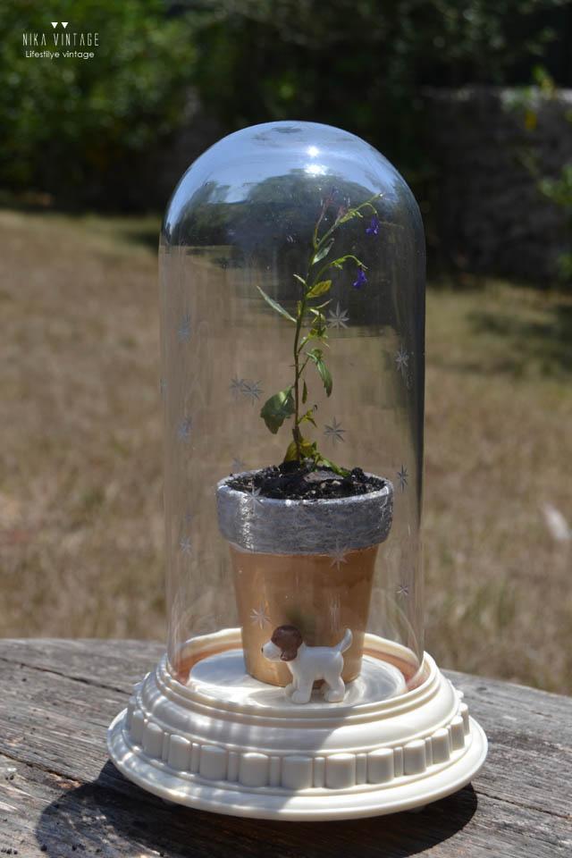 diy, fanal, campana, cristal, cupula, plantel, invernadero, hazlo tu mismo, jardin, jardineria