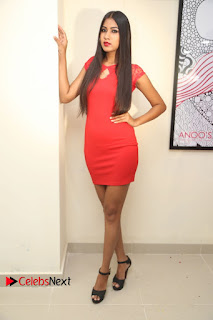 Actress Model Honey Pictures at Anoos Franchise Salon and Clinic Launch  0077.JPG