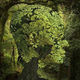 fotomontaje árbol y mujer