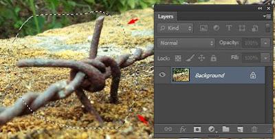 lasso tool photoshop