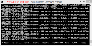 Dism install net framework 3.5