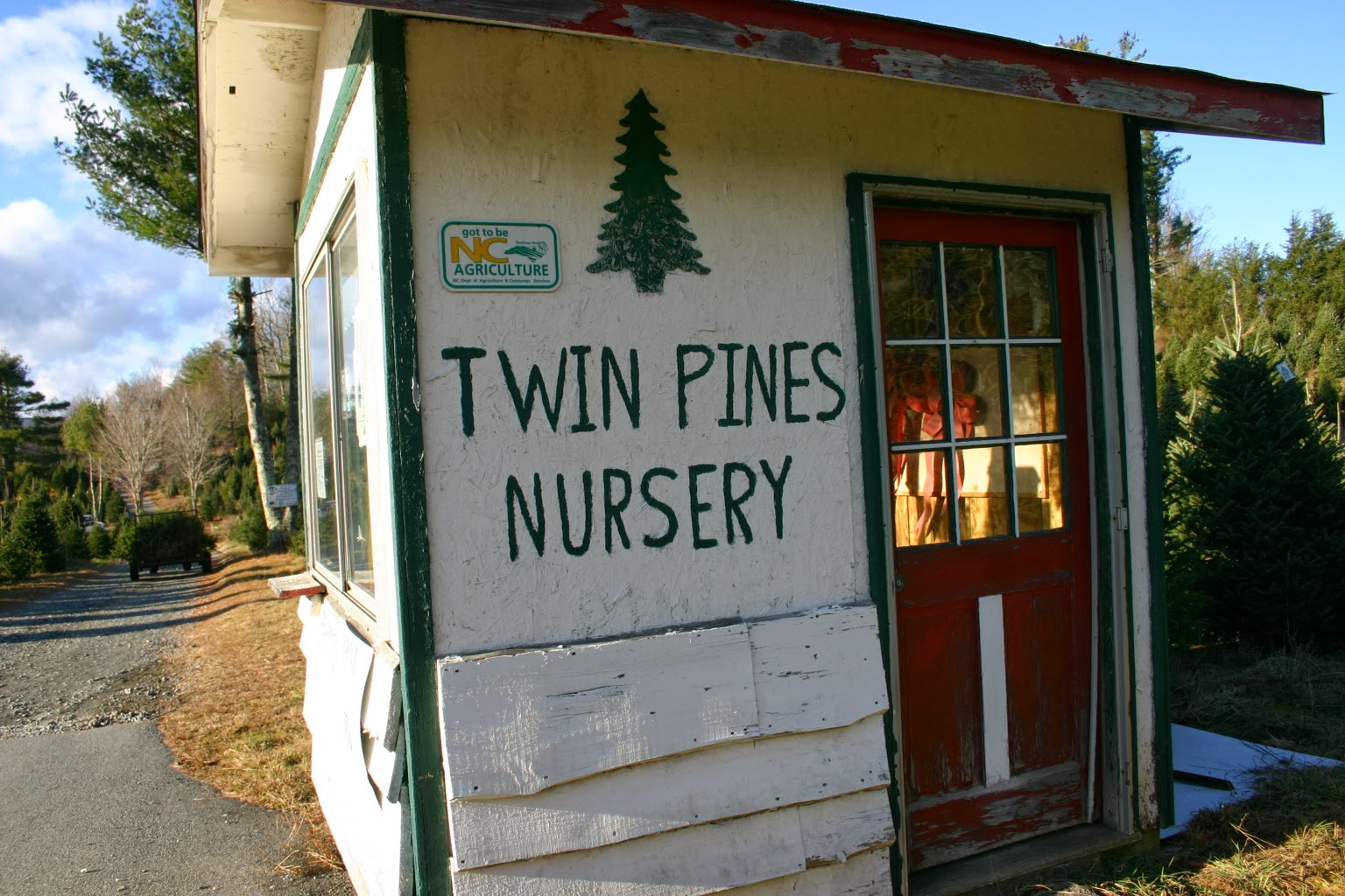 Starting My Senior Year Of College I Began The Tradition Traveling 4 Hours To Twin Pine Nursery Help Her Family Out On Christmas Tree Farm