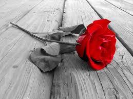 Kumpulan Puisi Cinta Romantis Terbaru 2016