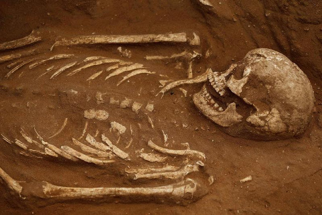 Philistine cemetery revealed in Israel's port city of Ashkelon