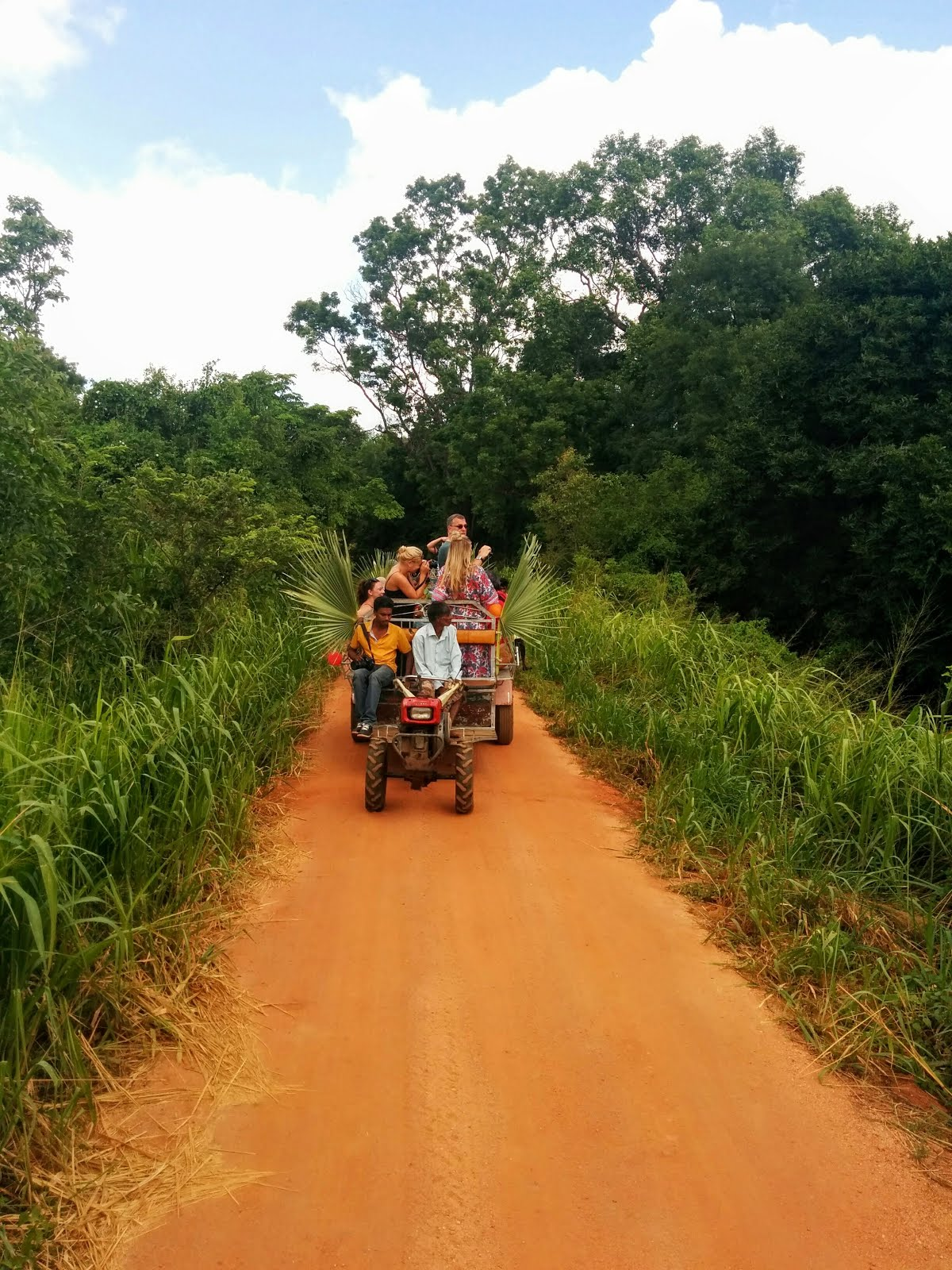 Countryside experience at North Sri Lanka