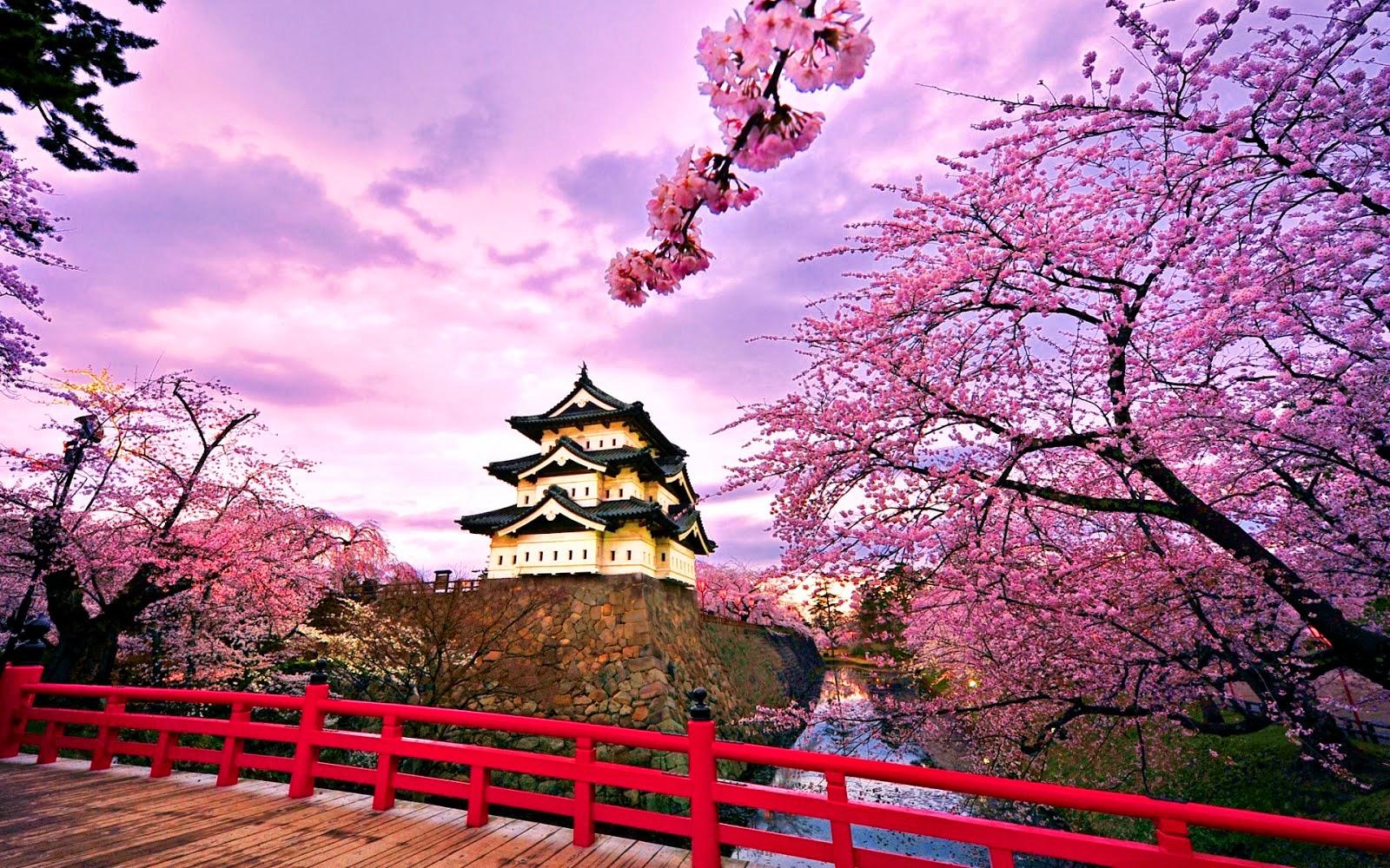 Tips dan Estimasi Biaya Backpacker Ke Jepang