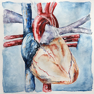 anatomical heart watercolor artist Sharon Warren smalti mosaic orsoni italian anatomy