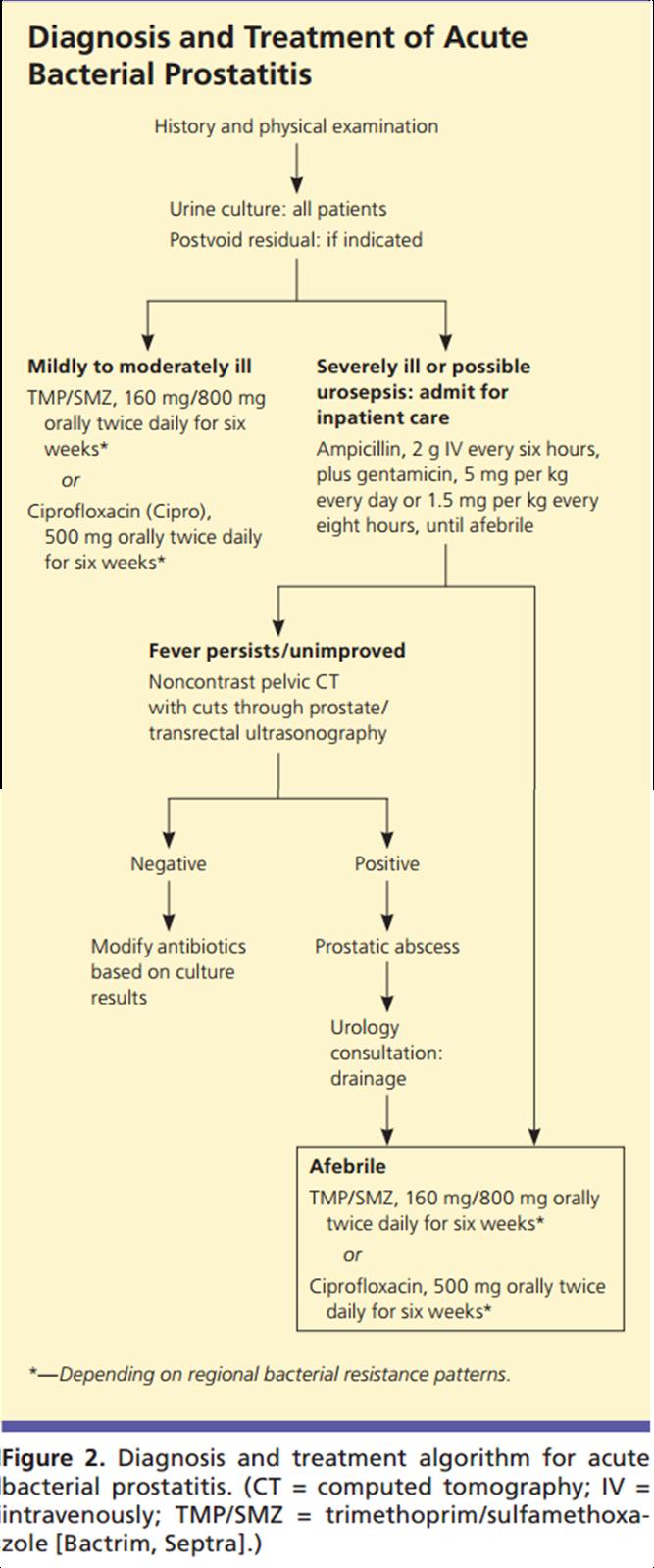 prostatitis en udu