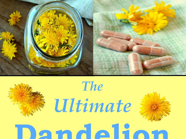 FREE - The Ultimate Dandelion Medicine Book