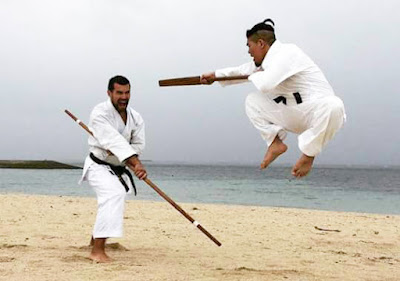 Shorei Martial Arts.