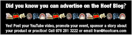 advertise on The Hoof Blog