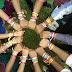 Friendship Day - फ्रेन्डशिप डे - 07 ऑगस्ट 2016 संध्या 04.30, नारळी बाग, शिवाजी पार्क,दादर