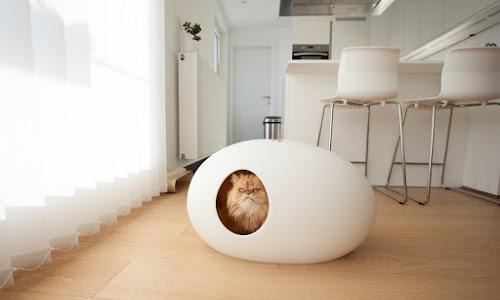 Casa para gatos ovalada