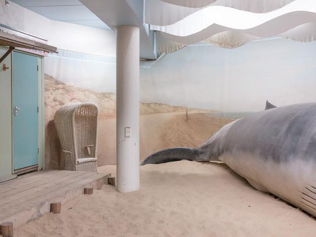 Fotografia assurda di una balena vicino ad una cabina di Nico Chiapperini