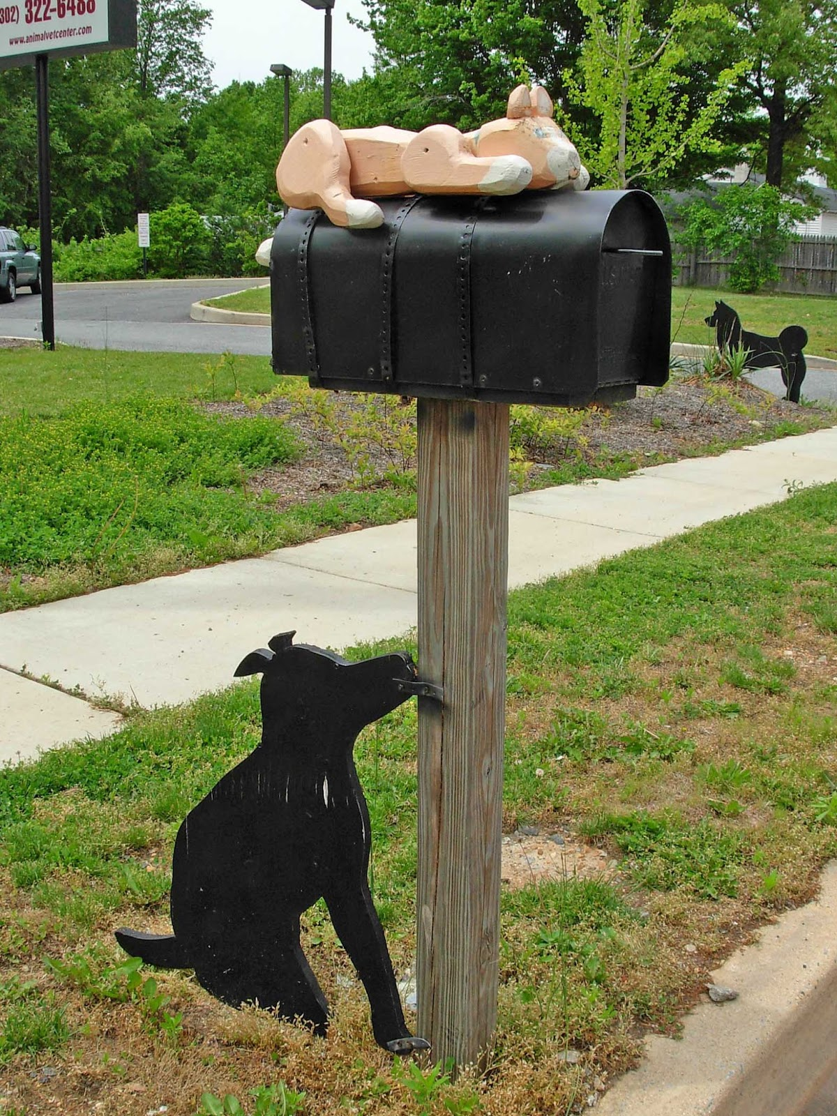geographically yours bear delaware usa