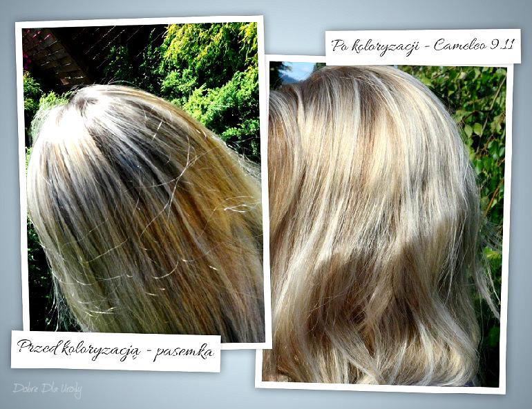 Domowa koloryzacja farbą do włosów Cameleo OMEGA+ Frozen Blond 9.11