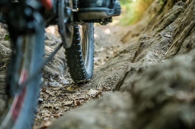MTB - Pointe des Trois Communes Mountainbike Tour Italien - Col de Turini