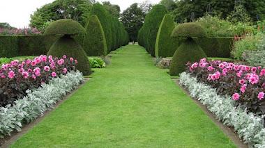 Jardines de Hinton Ampner , donde todos los caminos llevan a un destino