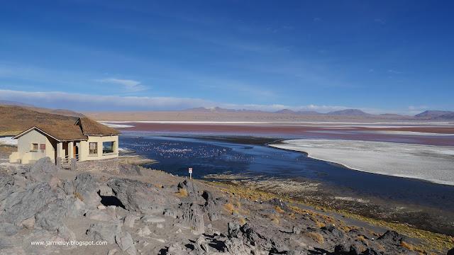 Laguna Colorada or Red Lagoon, Eduardo Avaroa Reserve, Bolivia
