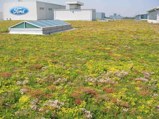 Living Roof on the F150 Assembly plant in Michigan