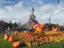 Rewind Halloween Season Dlp Town Square - Disneyland