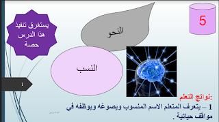 حل درس النسب في اللغة العربية للصف الحادي عشر