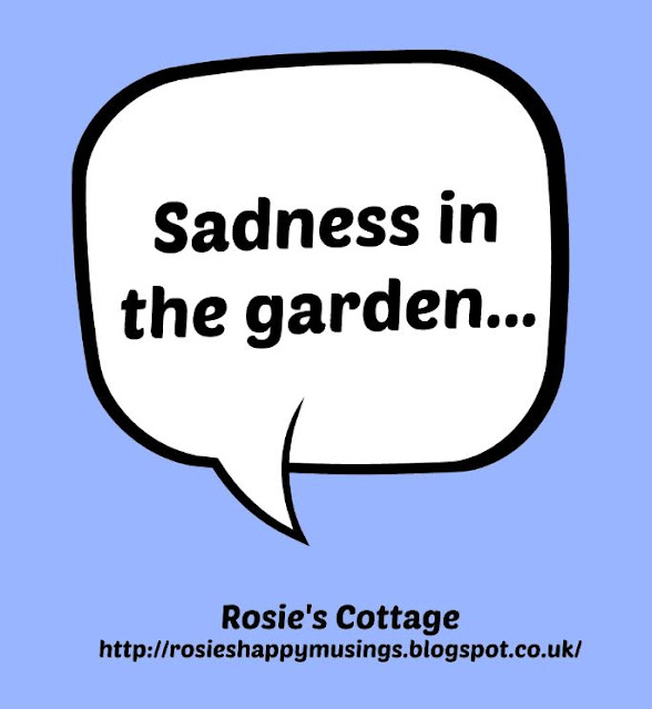 Sadness in the garden