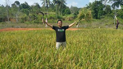 Pelopor 212 Mart Batam Ini Berhasil Inisiasi Panen Padi di Tanjung Memban