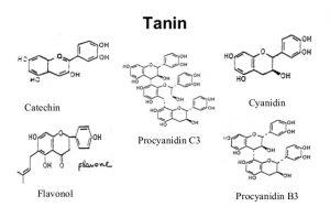 tanin-www.heatlhnote25.com