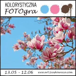 kolorystyczna FOTOgra :)