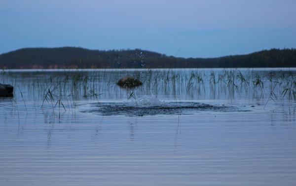 PauMau blogi nelkytplusbloggari nelkytplus nelkytplusblogit maisemakuva keski-suomi järvimaisema ilta yöuinti sukellus kuplat veden pinnalla