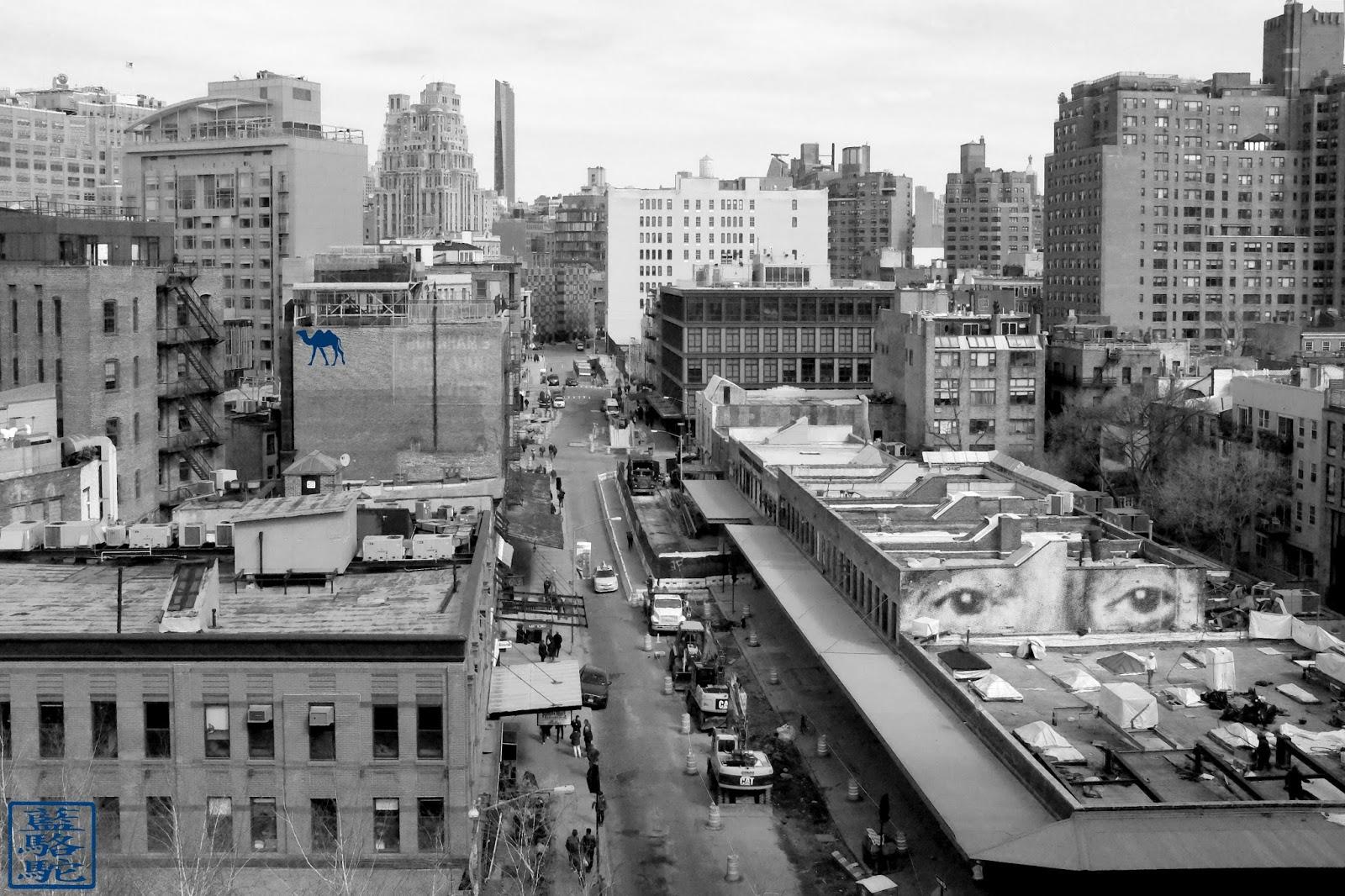 Le Chameau Bleu - New York - Vue du Musée Whitney