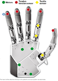 Bionic hand description showing where motors, tendon tension sensor and tactile sensors are