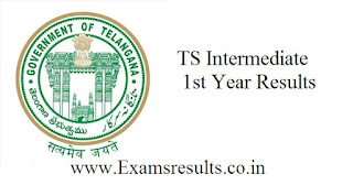 Ts Intermediate 1st year results