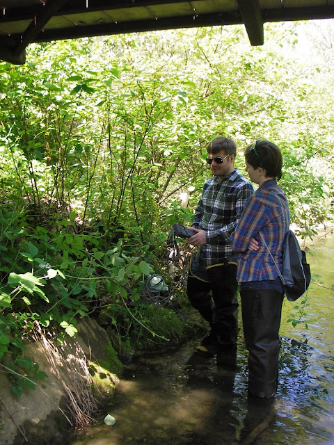 Spring water sampling along a stream