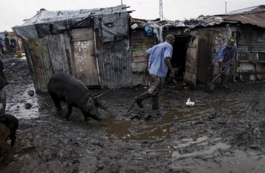 Pusat Penyembelihan yang Menjijikkan di Haiti yang Anda Tak Sanggup Lihat