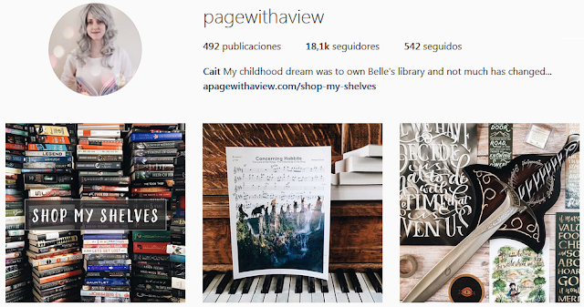 https://www.instagram.com/pagewithaview/