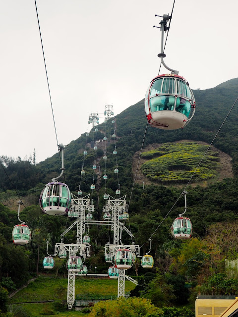 Cable cars in Ocean Park, Hong Kong
