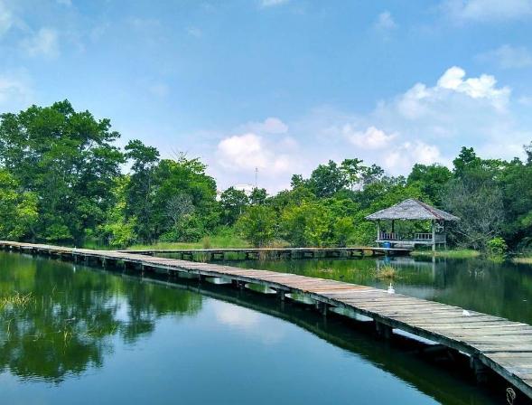 Danau di Universitas Riau