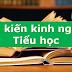 SÁNG KIẾN KINH NGHIỆM CẤP TIỂU HỌC (tổng hợp)